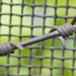 Stock Photo: Barbed wire and metal lattice against green grass and foliage