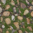 Cobblestones with moss and grass — Stock Photo #14118720