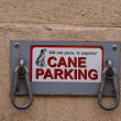 Dog parking in italy, rome — Stock Photo