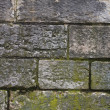 Stock Photo: Old brick wall with moss and soot