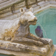 She wolf statue of siena fountain — Stock Photo