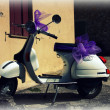 Stock Photo: Wasp - Vespa