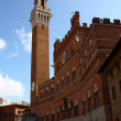 Siena, torre del Mangia — Stock Photo