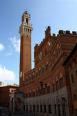Siena, torre del mangia — Foto de Stock