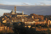 Siena landschap in zonsondergang — Stockfoto