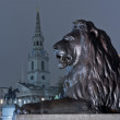 Stock Photo: Lion on trafalgar square