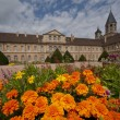 Flowerbed front of cluny abbey — Stock Photo #13261276