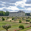 Stock Photo: Garden of chateau of chenonceau
