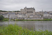 Royal chateau d'amboise — Stockfoto