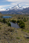 Lakes and Andes from Estancia Cristina — Stock fotografie