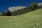 Maienfeld in Switzerland Alps — Stock Photo