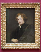 Van Dyck — Stock Photo