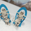 Stock Photo: Blue Snowshoes on Snow