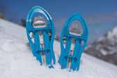 Blue Snowshoes on the Snow — Stock Photo
