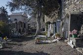 Cemetery in Triora — Stock Photo