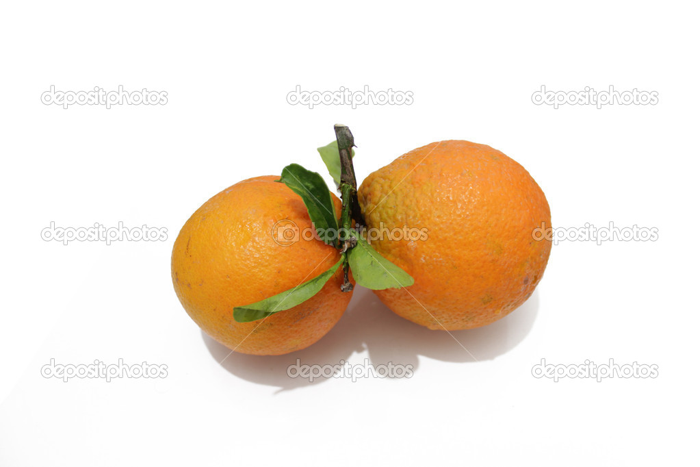 Isolaged two orange — Stock Photo #18286797