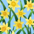 Seamless background with daffodils — Stock Vector