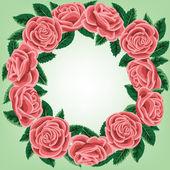 Rosa krans — Stockvektor