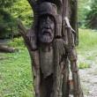 Wooden slavic idol — Stock Photo #32543961