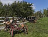 Vintage wagon — Stock Photo