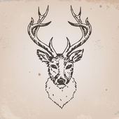 голову оленя — Cтоковый вектор