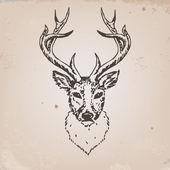 Cabeza de ciervogeyik kafası — Stok Vektör