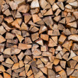 Wood - green energy sources - Stock Photo