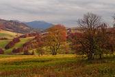Autumn in the mountains — Stock Photo
