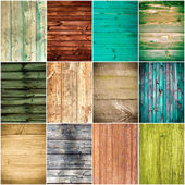 Collection of wood texture backgrounds — Stock Photo