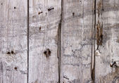 The old paint wood texture with natural patterns — Foto de Stock