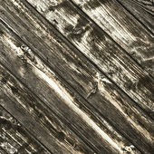 The old paint wood texture with natural patterns — Photo