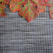 Stock Photo: Autumnal leaves on textured place mat