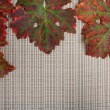 Autumnal leaves on textured place mat — Stock Photo