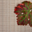 Autumnal leaf on textured place mat — Stock Photo