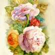 Watercolor Flower Collection: Roses — Stock Photo #13108746