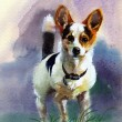 Stock Photo: Watercolor Animal Collection: Dog