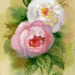 Watercolor Flower Collection: Roses — Stock Photo #13280195