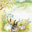 Watercolor Fauna Collection: Rabbit — Stock Photo