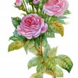 Watercolor Flower Collection: Roses - Stock Photo