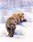 Brown bears in the snow — Stock fotografie