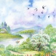 Spring landscape with swallows — Stock Photo