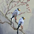 Painting collection Birds of spring — Stock Photo #30870319