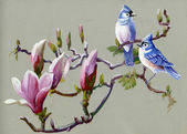 Painting collection Birds of spring — Stock Photo