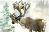 Moose in winter forest — Stock Photo