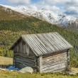 Cottage in alps — Stock Photo