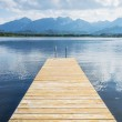 Jetty with lake and alps — Stock Photo #26788099