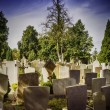 Stock Photo: Graves in evening