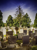 Graves in the evening — Stock Photo