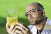 Scientific laboratory investigated liquid — Stock Photo