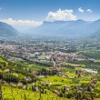 View to Merano South Tirol — Stock Photo #31227939